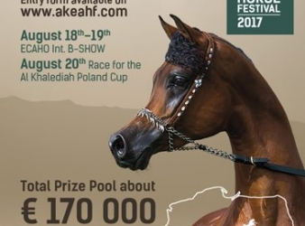 Entries for the 2017 AKEAHF open on June 23rd. A new prize system – 170000 euro in total.