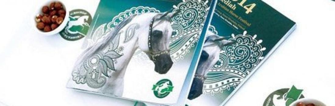Al Khalediah European Arabian Horse Festival  A NEW SHOW IN POLAND! FOUR MERCEDES-BENZ CARS FOR MICHAŁÓW