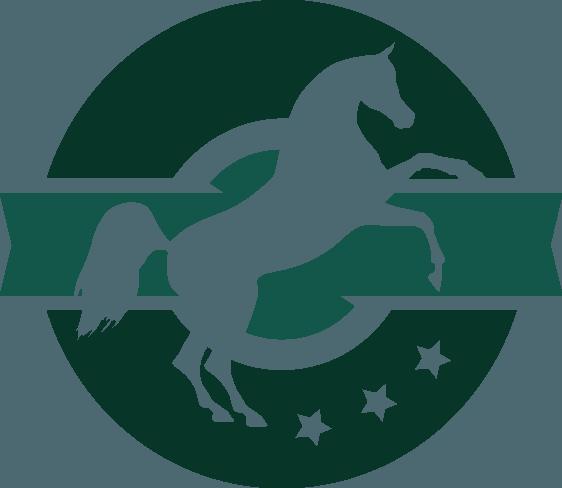 Al Khalediah European Arabian Horse Festival. Zmieniamy się dla was!
